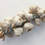 Sexual health hack: Garlic